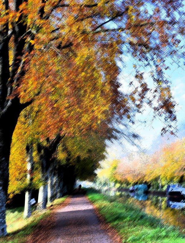 Mùa Thu và những chiếc lá vàng