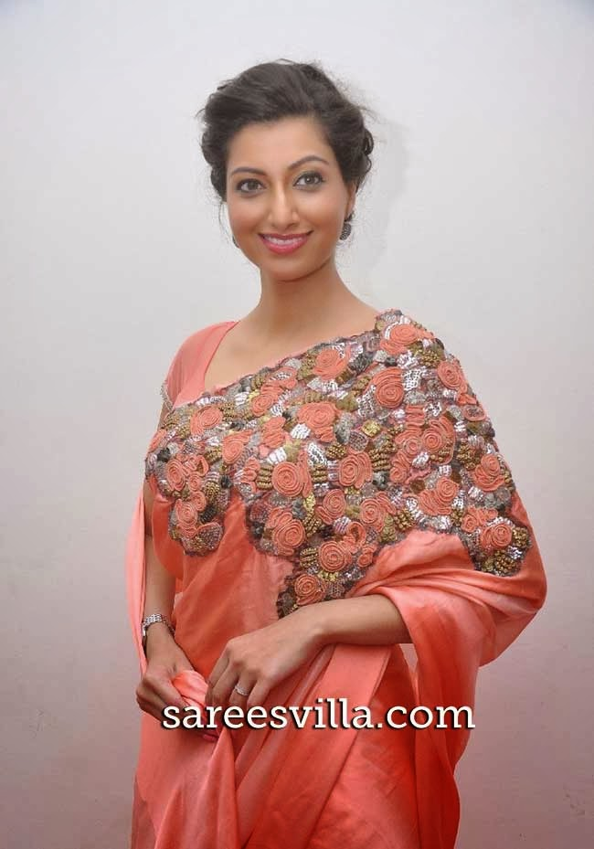 Hamsa Nandini in  Designer Saree