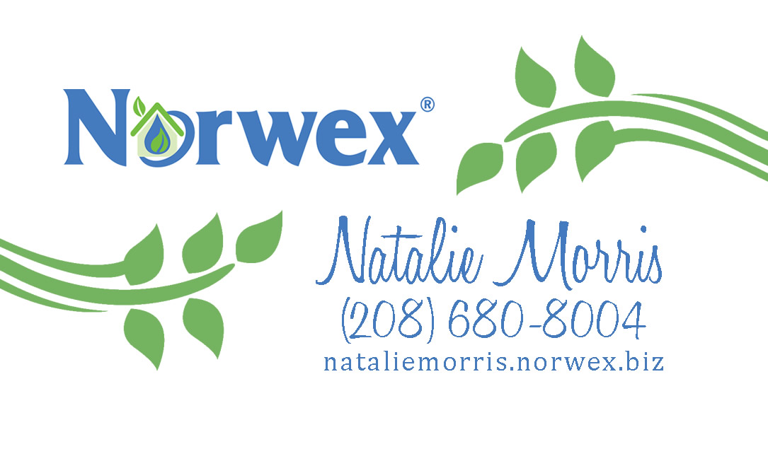 Absolute Appeal Design: Norwex - Business Stationery Set