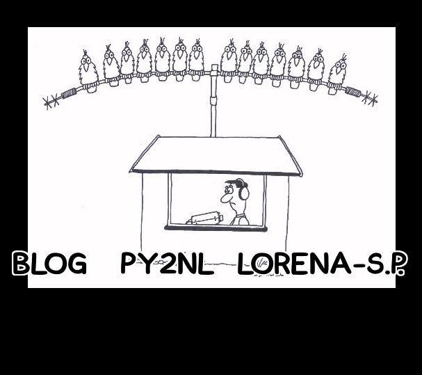 BLOG PY2NL