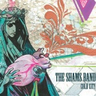 The Shams Band: Cold City
