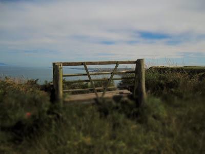 View To Whitehaven