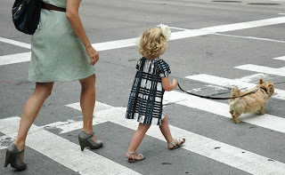 Pedestrian Crossing of young Student