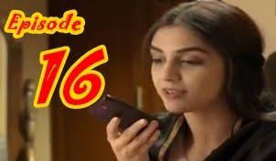 Man Mayal Episode 16 By Hum Tv