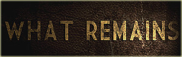 What Remains - A Fallout Total Conversion