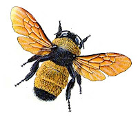 clip art black and yellow bumble bee