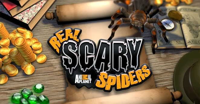 Real Scary Spiders 1.2.2 Apk + Data Direct Link By Discovery