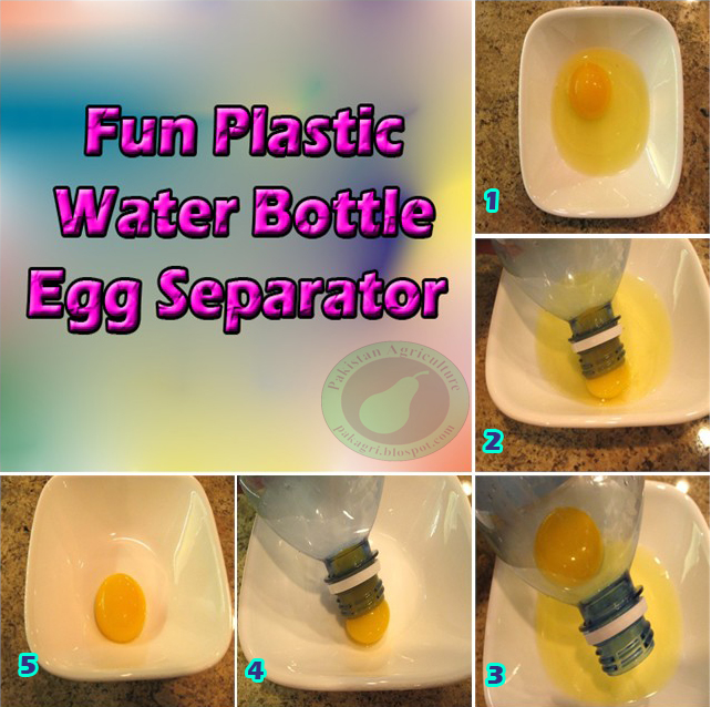 Egg Sucked into Bottle http://easyhomestead.blogspot.com/2012/12/diy-fun-plastic-water-bottle-egg.html