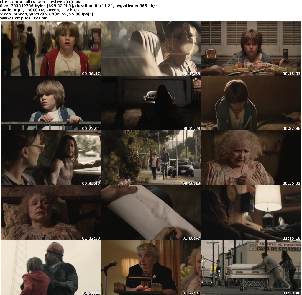 Hesher DVDRip [Español Subtitulado]