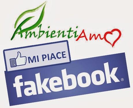 """Clicca """"MI PIACE"""" su Facebook"""