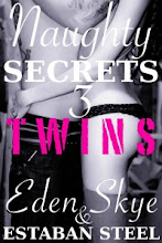 Naughty Secrets 3: Twins
