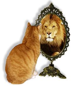 Risultati immagini per gatto leone