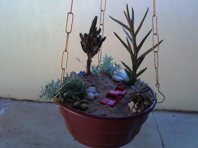 mini jardim cactos suculentas : mini jardim cactos suculentas:com Cactos e Suculentas.: Mini Jardim Temático Suspenso de Cactos