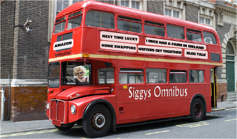 New website: Siggys Omnibus with flash banner