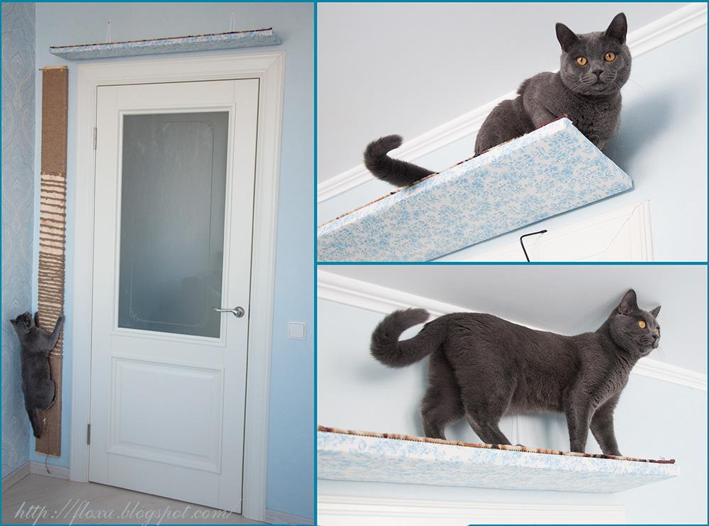 тише тише кот на крыше