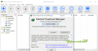 Internet Download Manager 6.25 bulild 02 full crack