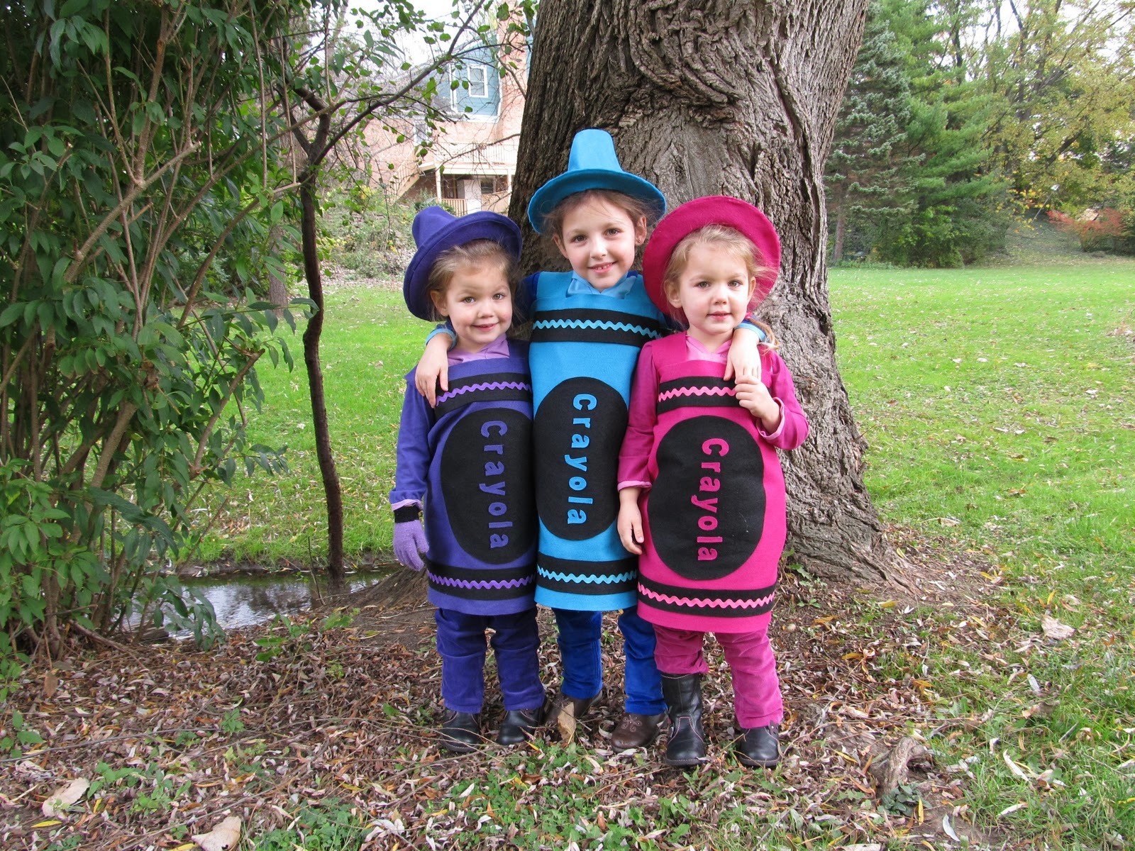 I have entered this picture into The Childrenu0027s Place costume contest. From now through November 11th go HERE and VOTE for these cute crayons.  sc 1 st  Designing Dreams on a Dime & Designing Dreams on a Dime: Crayola Crayon Costumes
