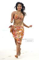 Sanjana sizzling in beach,siziling girls, sanajana hot, sanjana bikini pics, sanjana hot wallpaper, sanjana hot wallpapers, sanjana south actress,