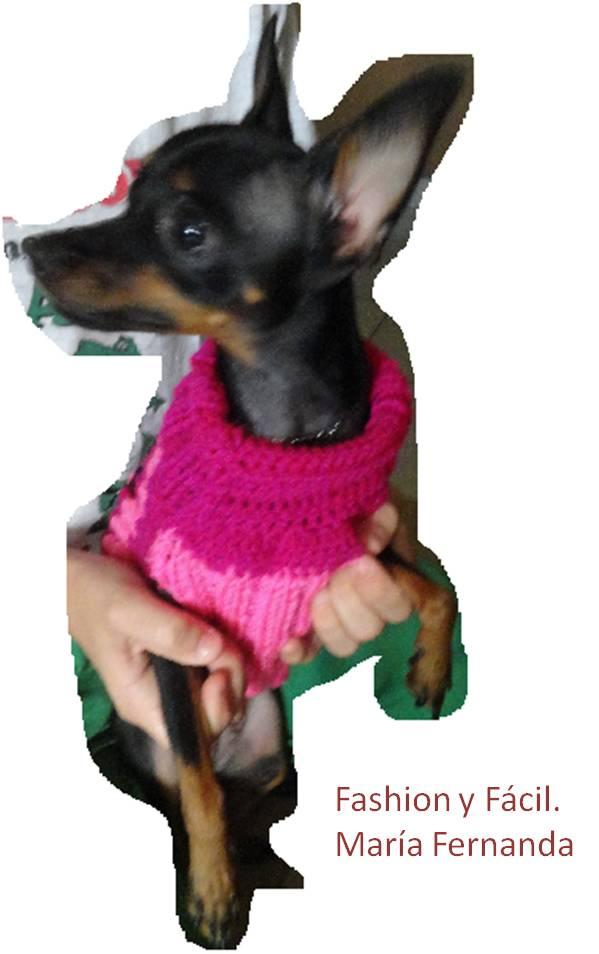 Asombroso Fáciles De Crochet Patrón De Suéter Del Perro Friso ...