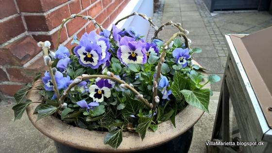Forår i krukker