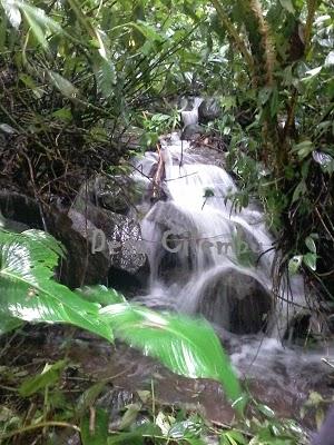 Mencari Mata Air di Gunung Kareumbi