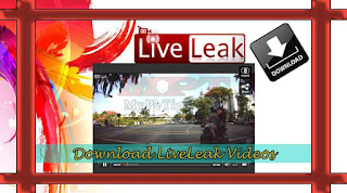 Downloading Video Clips from Liveleak.com