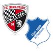 FC Ingolstadt - TSG Hoffenheim
