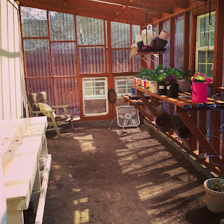 Jen Grayson greenhouse