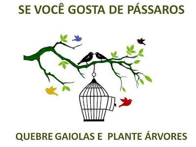 se você gosta de pássaros, quebre gaiolas e plante árvores