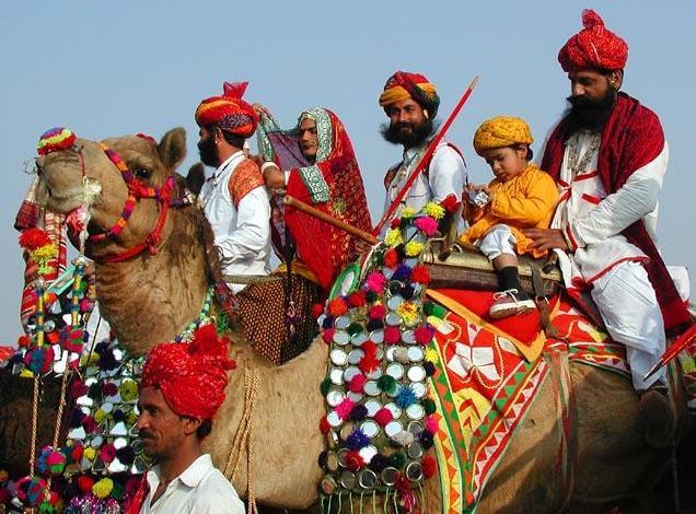 Camel Fair 2013