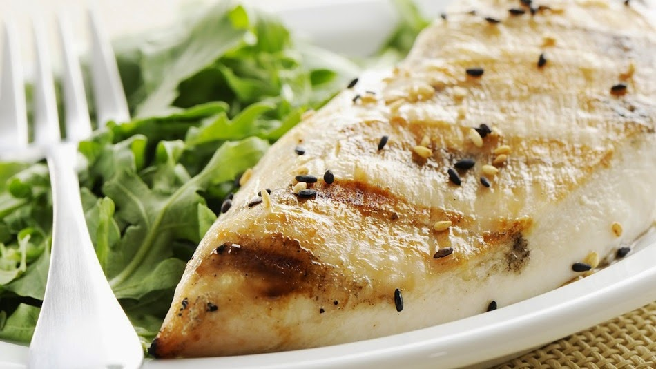 Atkins low carb diets