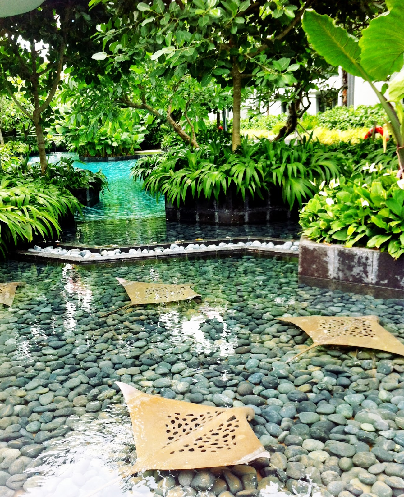 Shallow ponds and rocks on pinterest for Shallow garden pond