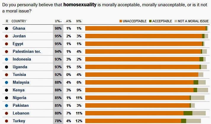 Homosexuality (Survey Below)?