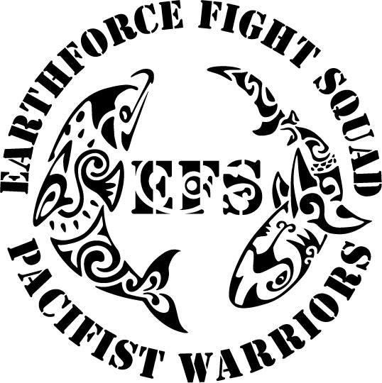 EARTHFORCE FIGHT SQUAD