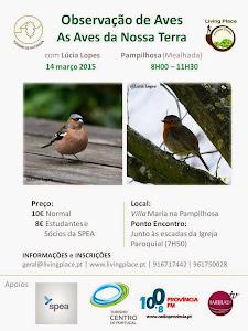 Workshop de Observação de Aves
