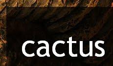 Cactus Blog.