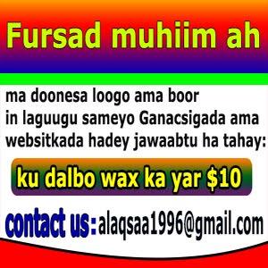 Fursad muhiim ah