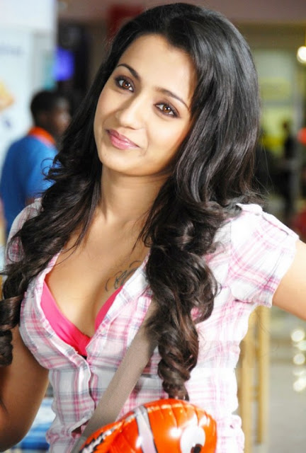 Hot Telugu Actress Trisha Navel Photos