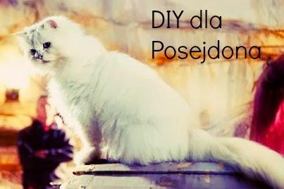 Zabawka dla kota DIY