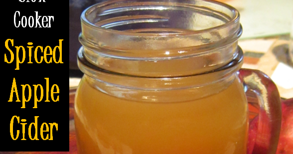 The Shady Porch: Slow Cooker Spiced Apple Cider