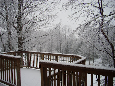 Out the back door in the Poconos 2012