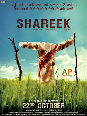 Shareek 2015 Punjabi pDVDRip 700mb