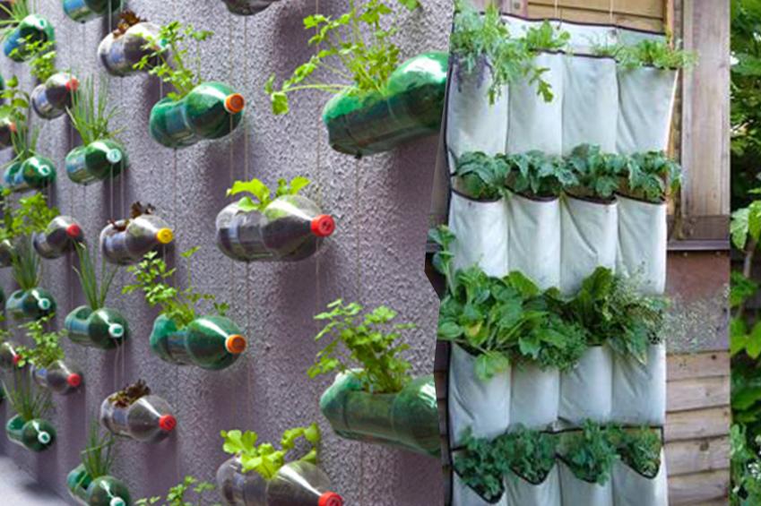 jardim vertical externo: um lindo jardim vertical???E além de tudo com material reciclado