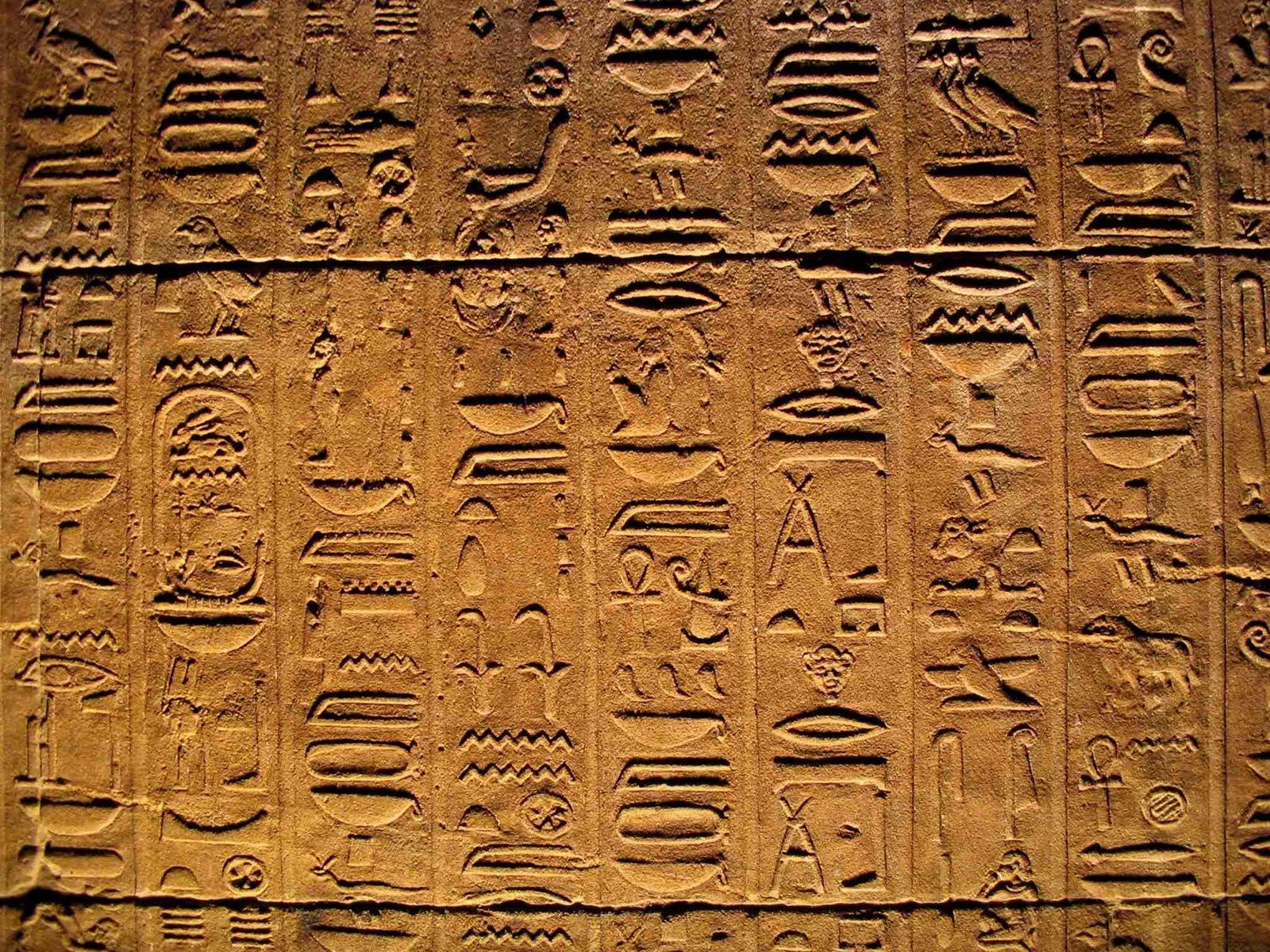 main characteristics of egyptian art essay Egyptian art, essay, example for free egyptian, art, essay, bartleby , egyptian art essay.