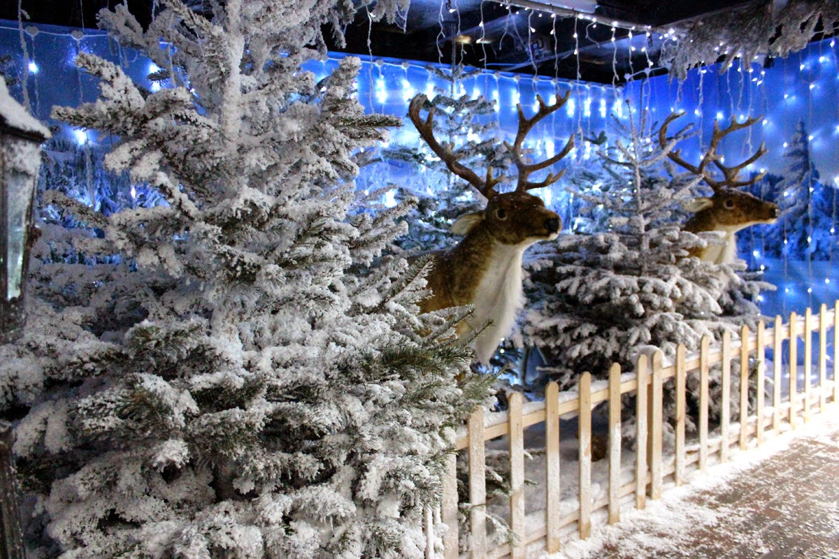 reindeer, holiday magic, winter, todaymyway.com
