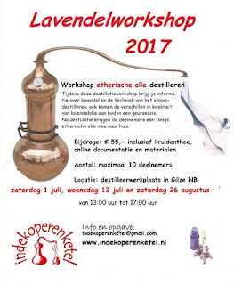 Workshops lavendel destilleren