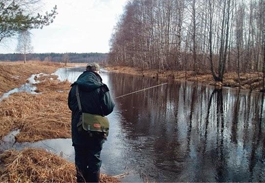 ловля щуки весной в ленинградской области запрет