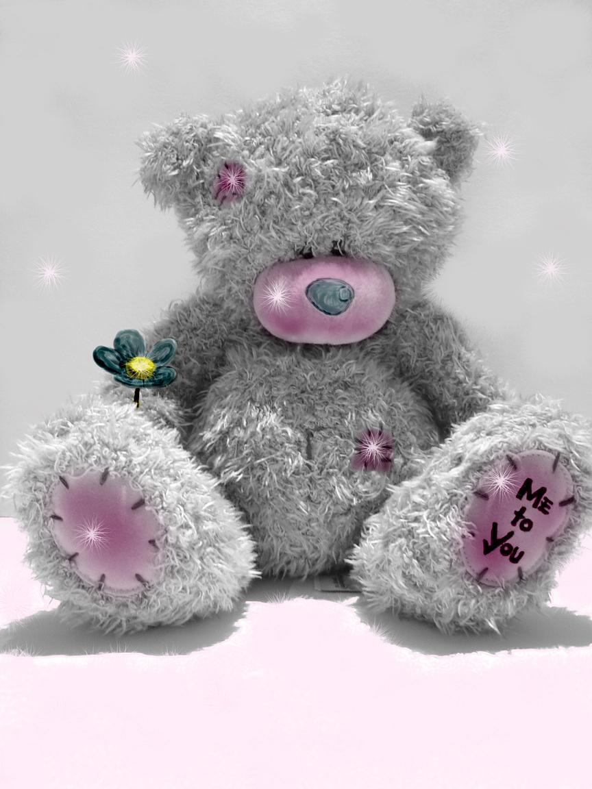 Teddy bear Me to you miss you