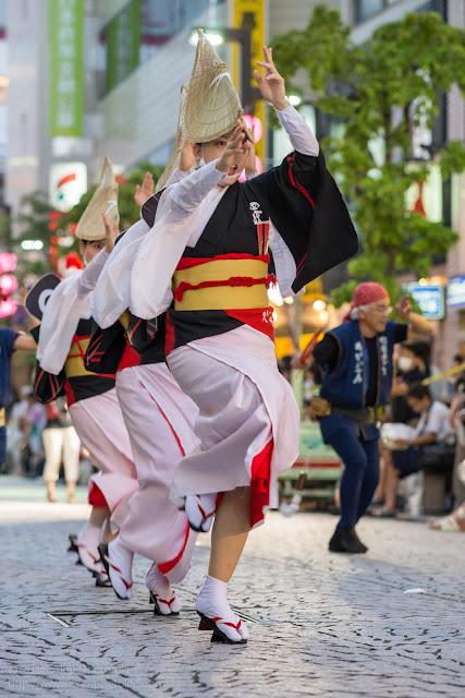 三鷹阿波踊り 阿波踊り連 たまきの女踊り