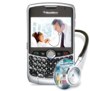 Cara Merawat Blackberry Yang Baik dan Benar